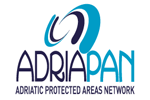 From AdriaPAN to AdrIonPAN or the expansion of an active network