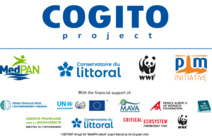 Logo COGITO project