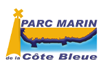The Côte Bleue Marine Park is recruiting its new director – Deadline: 1/12/20