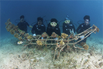 EU project on ocean governance to restore reefs in Sulu Sulawesi