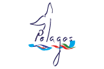 Call for scientific partnership proposals for the French part of the Pelagos Agreement
