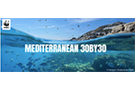 Why and where to protect 30% of the Mediterranean Sea to recover vital biodiversity and fisheries, a new study reveals