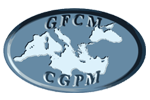 The GFCM has a new 2030 Strategy for sustainable fisheries and aquaculture in the Mediterranean and the Black Sea