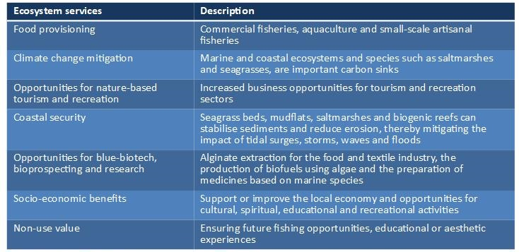 Results of the Ecosystem Services assessment