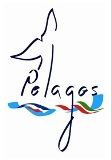 Call for consultation for the drafting of the new management plan (2022/2028) of the Pelagos Agreement
