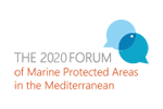Postponement of the virtual sessions of the Forum to mid-2021