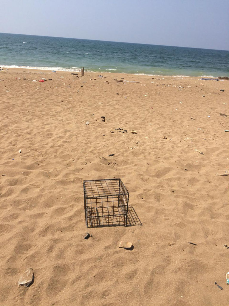 Cage for turtle nest protection