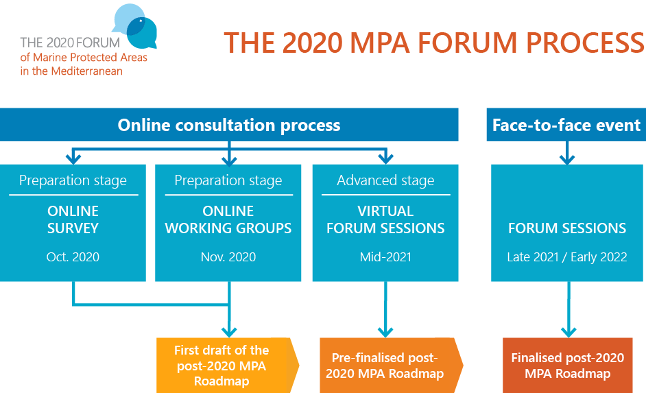 The 2020 MPA Forum process